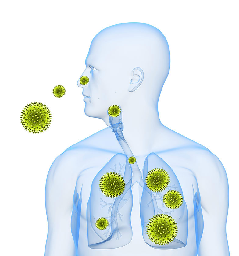 allergy page